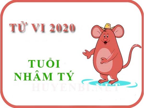 van-menh-tuoi-nham-ty-nam2020