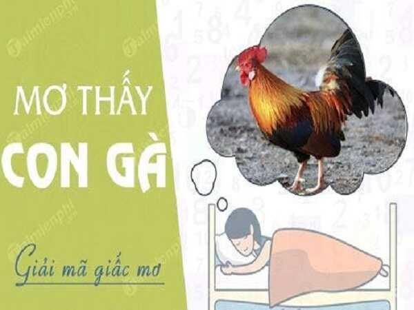 Mơ thấy con gà đánh con bao nhiêu