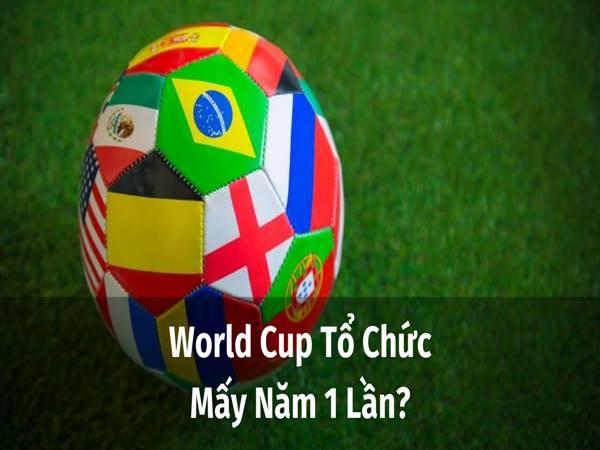 World Cup mấy năm 1 lần? World Cup 2022 được tổ chức ở đâu?