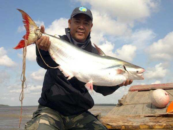 Nằm mơ thấy bắt cá đánh con gì ăn chắc, báo hiệu điềm gì